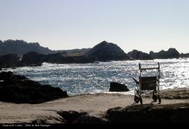 F0877 Chair at Point Lobos